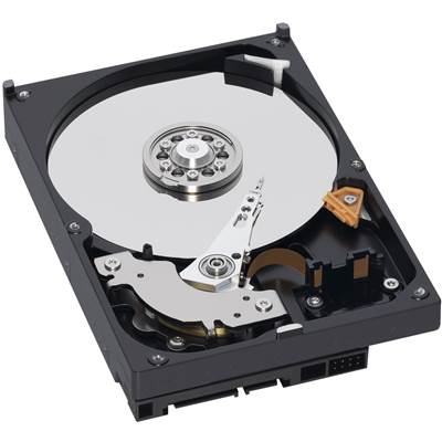 "Western Digital Blue WD5000AZLX 500GB 3.5"" SATA 6.0Gb / s Hard Drive"