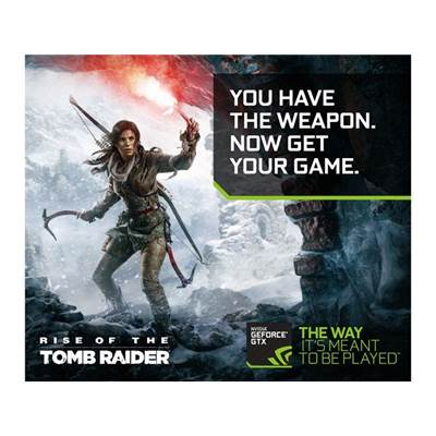 Square Enix : Rise of the Tomb Raider (2016) Game Coupon