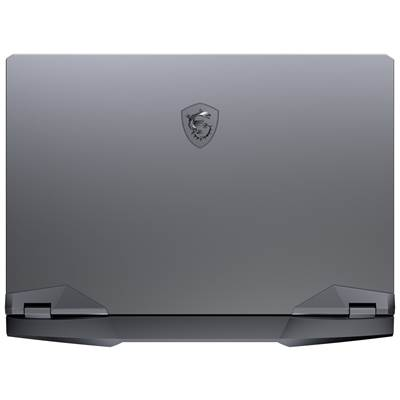 "MSI GE66 Raider 10SGS-057 15.6"" 300Hz (3ms) Wide View Angle Full HD Gaming Laptop w /  NVIDIA GeForce RTX 2080 Super Max-Q (Core i9-10980HK)"